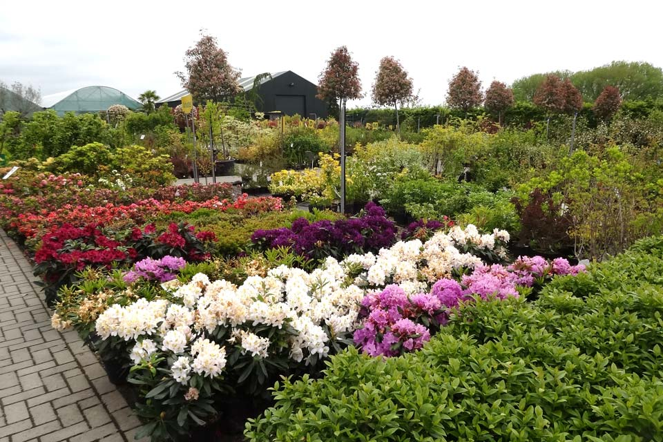 jardinerie (15)