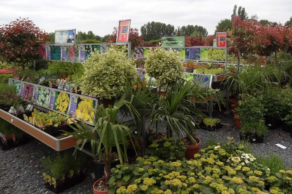 jardinerie (8)